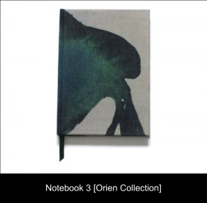 Floral Designs; Notebook 3 [Orien Collection]